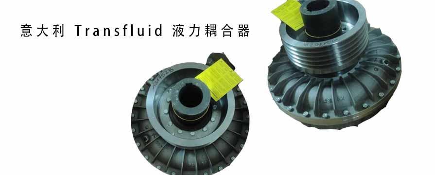 意大利 Transfluid 液力耦合器