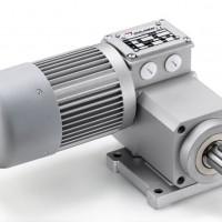 Mini Motor 单相异步电动机