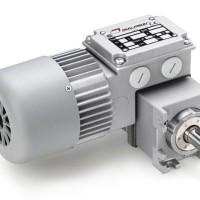 Mini Motor 三相异步电动机