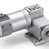 Mini Motor 同轴齿轮电动机:单相或三相