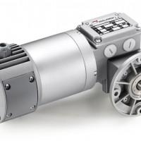 Mini Motor 蜗轮蜗杆减速电机,带行星减速器:单相或三相