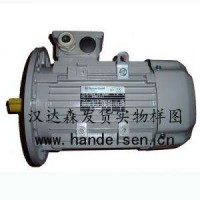 AC-Motoren循环电机磁力电机高转矩电机防水电机销售