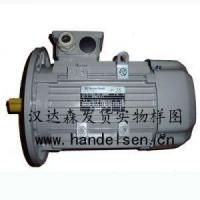AC-MOTOREN电机IE2GU13MB600汉达森直代