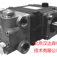 speck-Triplex高压柱塞泵P11/13-100选型参考