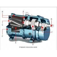 DEPA隔膜泵DL2540