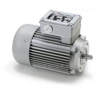 Minimotor伺服电机BS 55选型参考