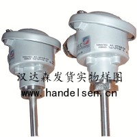 TEMATEC温度传感器 WT024-1455