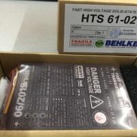 Behlke HTS 61-02固态高压开关用于脉冲电源