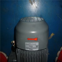 德国Speck磁力漩涡泵AY-2251-PM-SR