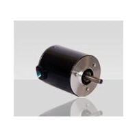 瑞典Transmotec蜗轮电机WHD123224-12-20