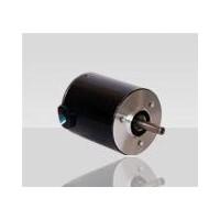 瑞典Transmotec蜗轮电机WHD123224-12-10