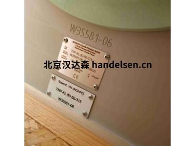 Munsch电磁耦合卧式泵