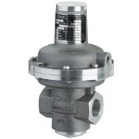 MEDENUS气体压力调节器 R50