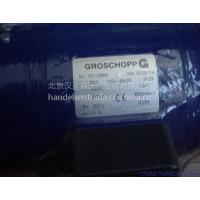 GROSCHOPP马达产品详细介绍