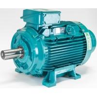 brook_crompton W铝制电机
