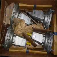 意大利Bonfiglioli直齿轮电机RAN 系列