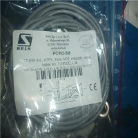 专业销售传感器RZ65R2M-SELS