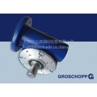 GROSCHOPP减速机Nr.7794089  WK 1095702 IP44