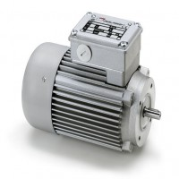 Mini Motor电机AC 244PT