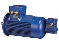 cemp防爆电机IEC 危险区域制动电机